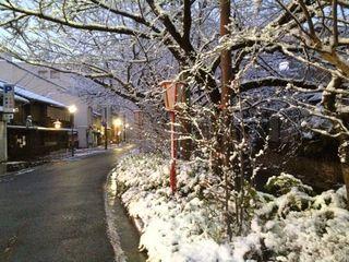 京都も雪化粧.jpg