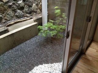 寝室から見た庭.jpg